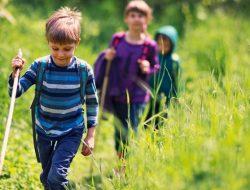 ارتباط بین کودک و طبیعت چگونه شکل می گیرد و چه فوایدی دارد؟
